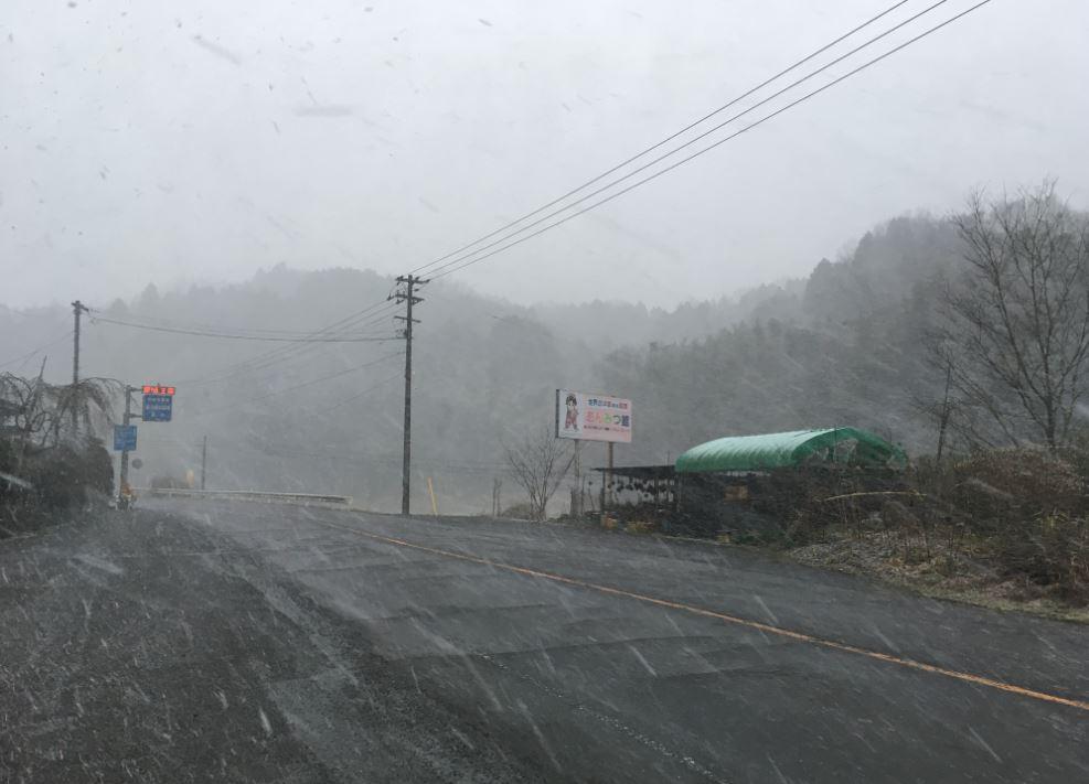 【さぬき市】雪が降る@さぬき市多和